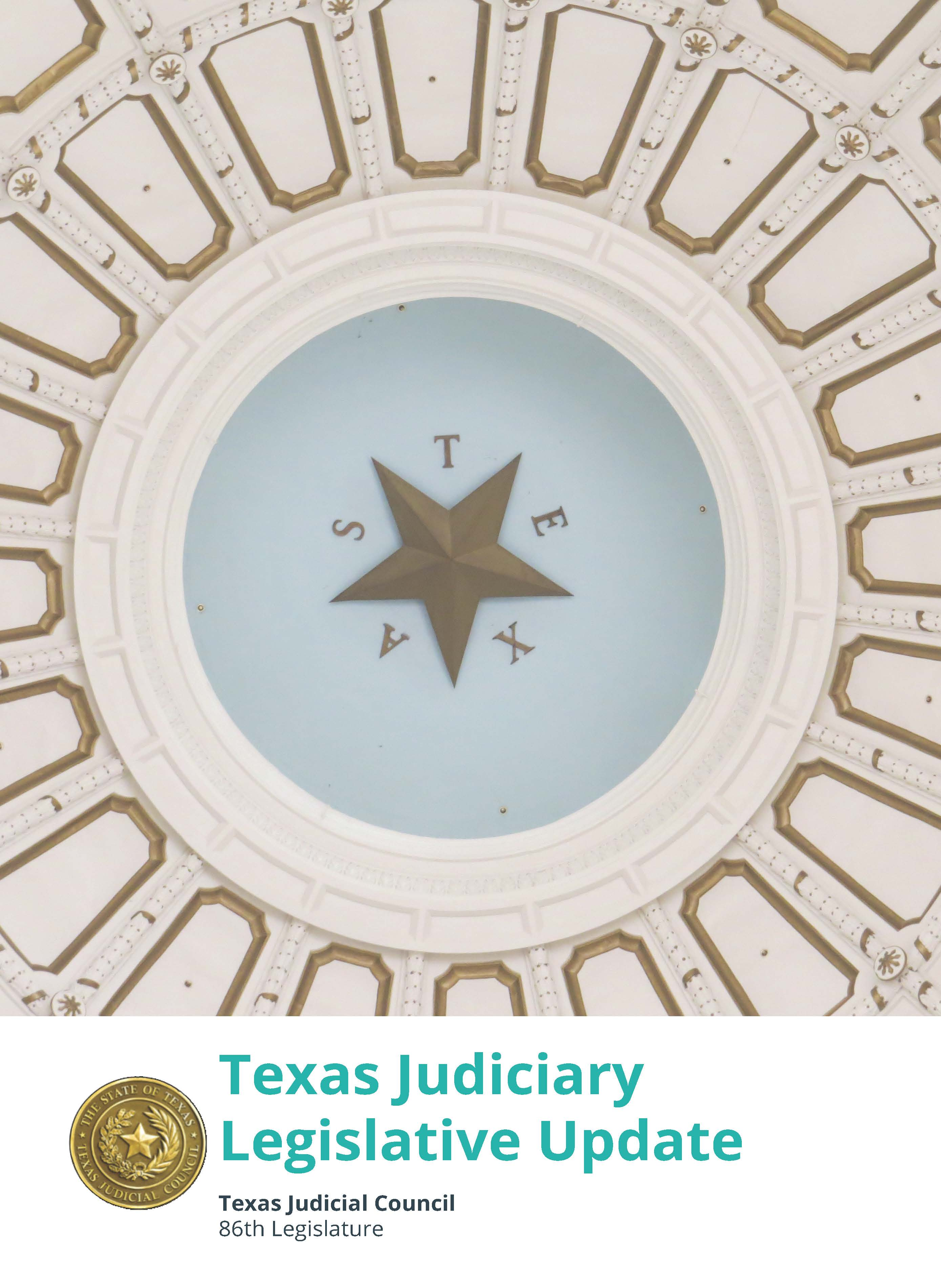 Icon (Pages from 86th Legislative Update v5.jpg)